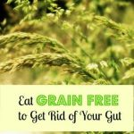 Eat Grain Free to Get Rid of Your Gut