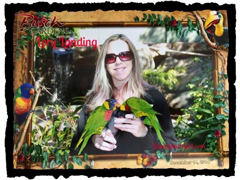 Buschgardenslorilanding01