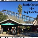 Busch Gardens is for Big Kids Too!